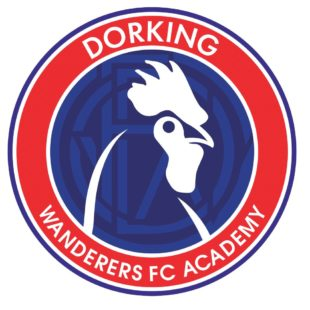DORKING WANDERERS FOOTBALL ACADEMY